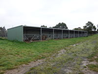 Animal, Calf, Livestock Shed with Gates - Jumbunna Engineering