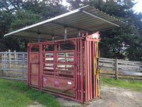 Cattle Crush Roof - Jumbunna Eng Korumburra