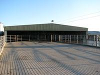 Cow Shed + Cow Yards - Jumbunna Engineering