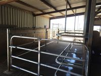 Cow Stock Yards Gates - Jumbunna Engineering