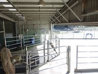 Cow Yards & Gates - Jumbunna Engineering