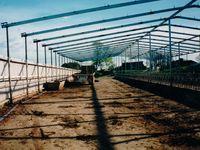 Feed Pad Roof - Jumbunna Engineering - South Gippsland